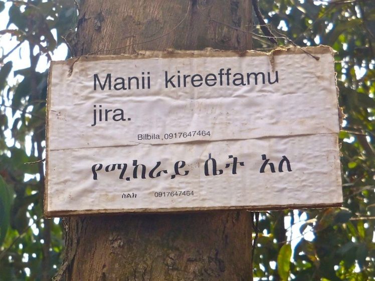 "This ""house for rent"" sign is written in Oromiffa and Amharic. The Amharic alphabet is made up of characters called fidel."