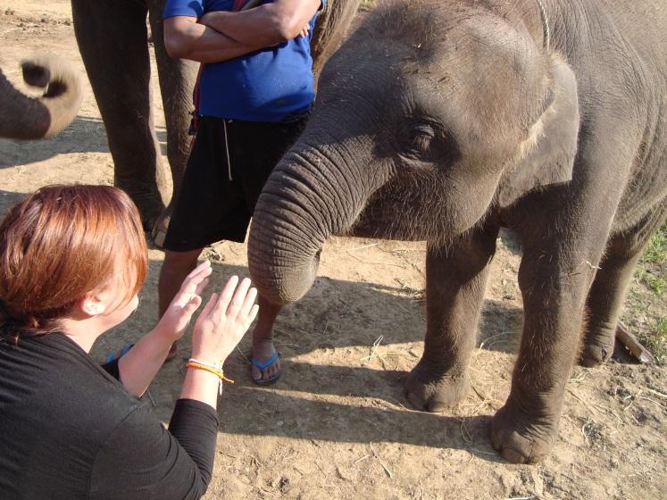 Charish Badzinski petting a baby elephant
