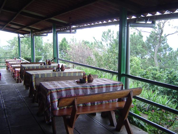 restaurant view 8