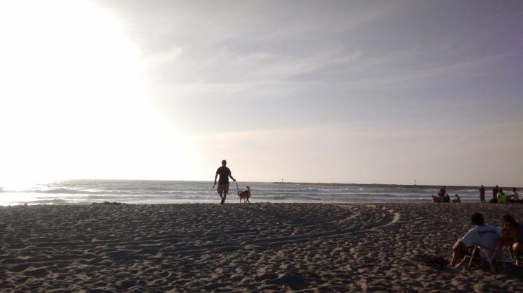 Joel Badzinski and Brooklyn Hound in San Diego, California.