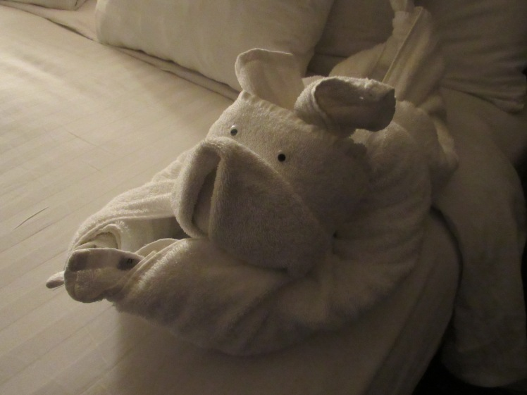 the piglet towel animal, MS Oosterdam, Holland America Cruise Line towel animal