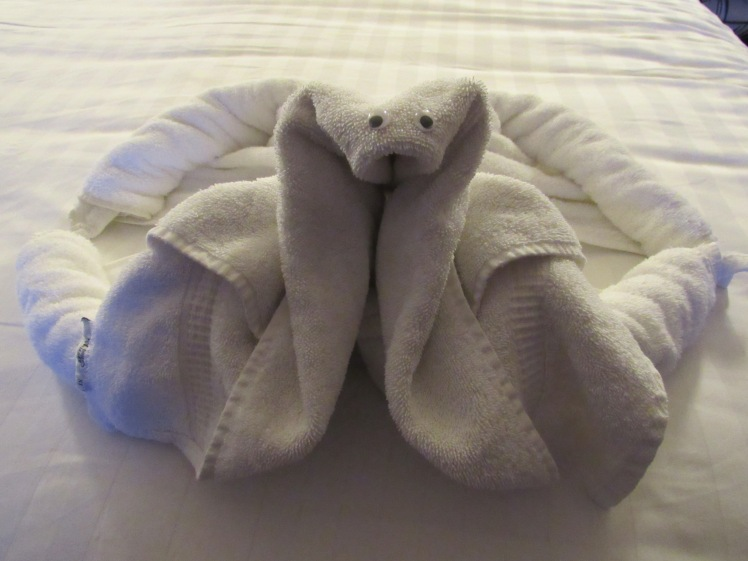 MS Oosterdam, Holland America Cruise Line towel animal