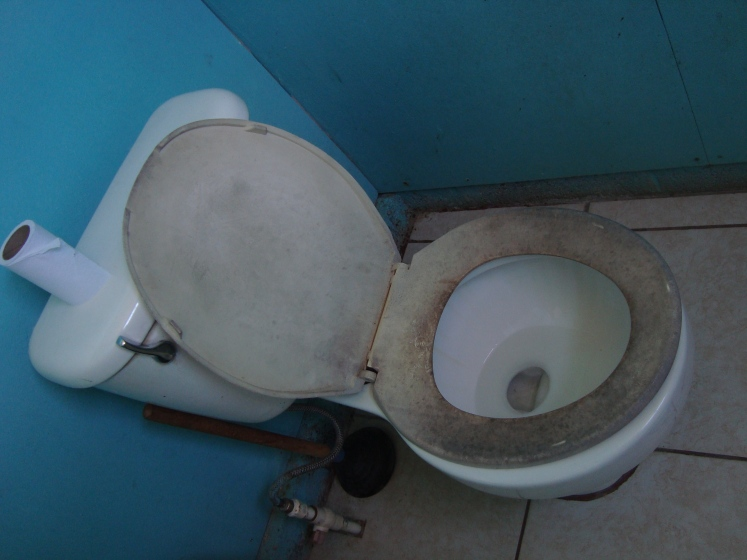toilets in other countries